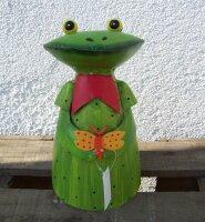 Zaunhocker Frau Frosch Schmetterling