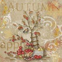 20 Servietten Apfel Ernte